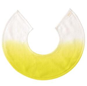 ジェリー3 レモン物画像
